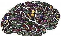 关于俄语翻译语言意识的培养